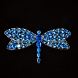 Czech Art Deco dragonfly brooch 1930 divine style french antiques 1